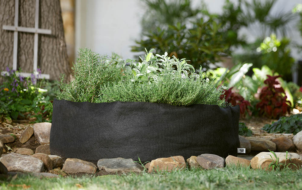 Container Gardening Ideas Smart Pot Blog